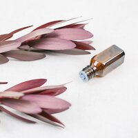 bottle of essential oil laying next to purple branch